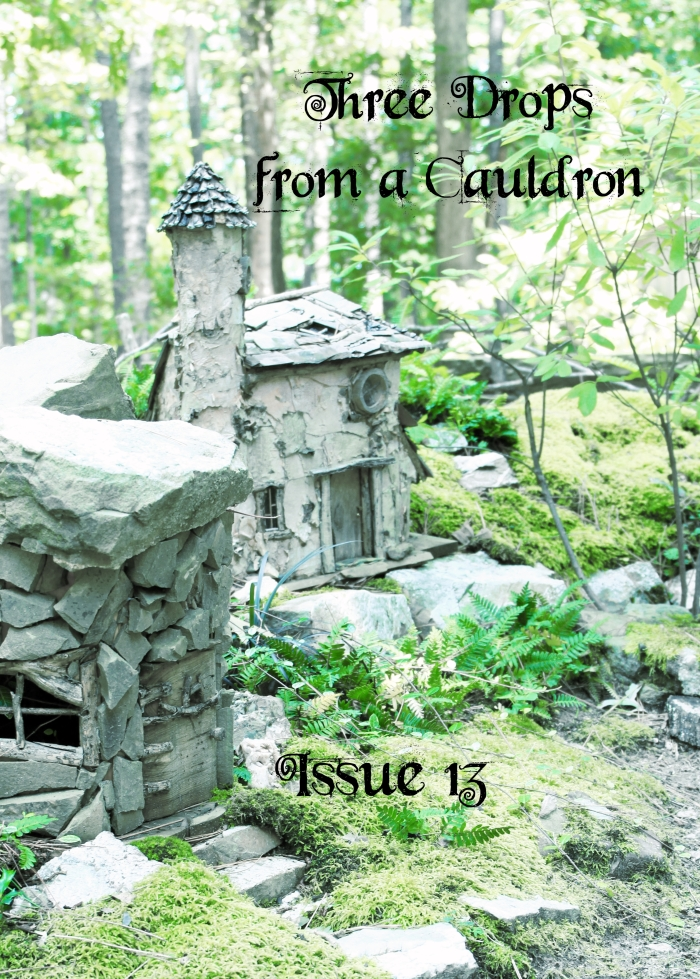 Three Drops from a Cauldron: Issue 13 (March 2017)